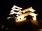 大洲城天守及び高欄櫓(ライトアップ)