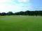 後楽園の芝生庭園