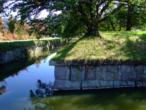 龍岡城の水堀と稜堡