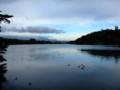 朝の南湖公園