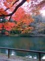 [庭園][紅葉]旧有備館庭園