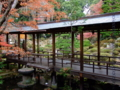 [庭園][紅葉]恵林寺庭園