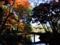 [庭園]六義園の千鳥橋周辺
