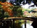 [庭園]六義園の千鳥橋
