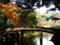 六義園の千鳥橋