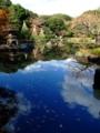 [庭園]旧古河庭園の日本庭園