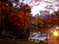 [紅葉][庭園]小石川後楽園の大堰川