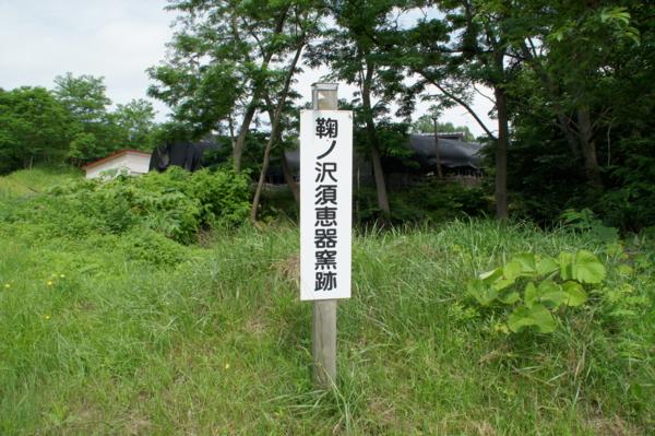 20110710094959
