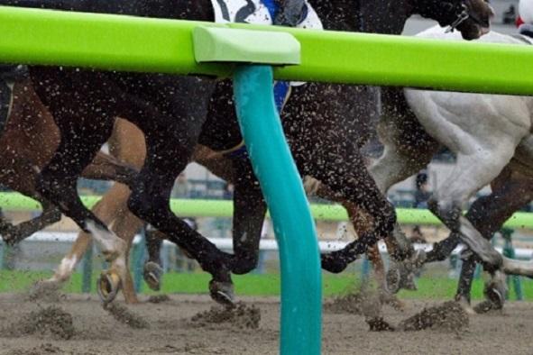 競馬レース関連