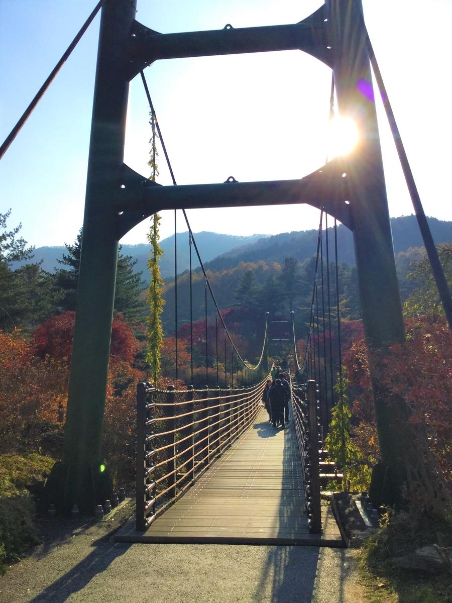 アチムゴヨ樹木園 加平 韓国旅行 観光