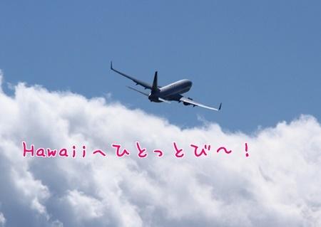 f:id:sansedaihawaii:20160926165750j:plain