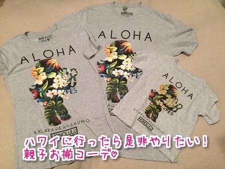 f:id:sansedaihawaii:20161004211654j:plain