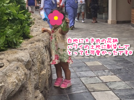 f:id:sansedaihawaii:20161005224820p:plain