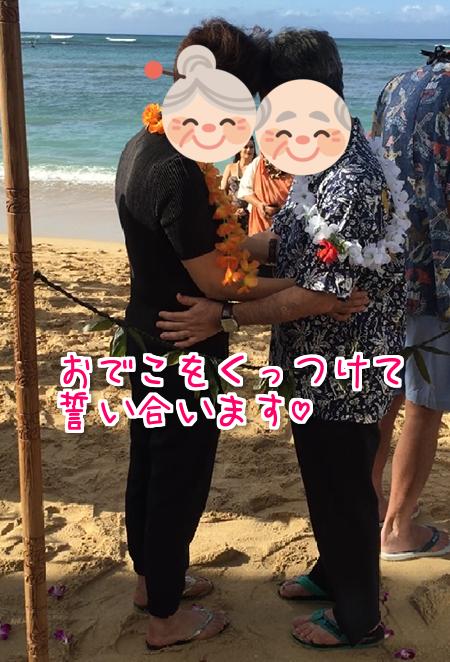 f:id:sansedaihawaii:20161010220310p:plain