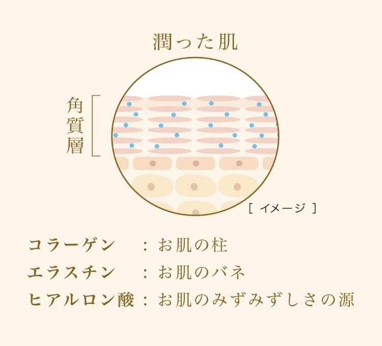 f:id:sanshinsu:20171024175750j:plain