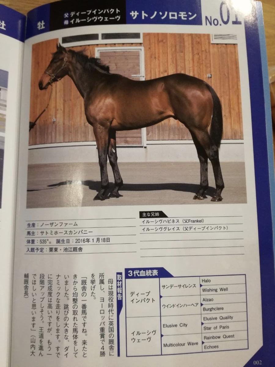 f:id:sanshonoki:20190520232638p:plain:w300