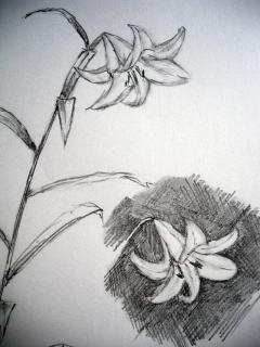 f:id:sanshu_seiso:20100624164628j:image