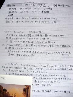 f:id:sanshu_seiso:20100805202426j:image