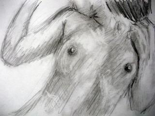 f:id:sanshu_seiso:20110429201454j:image