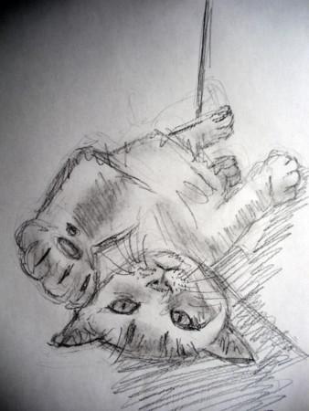f:id:sanshu_seiso:20110719140251j:image
