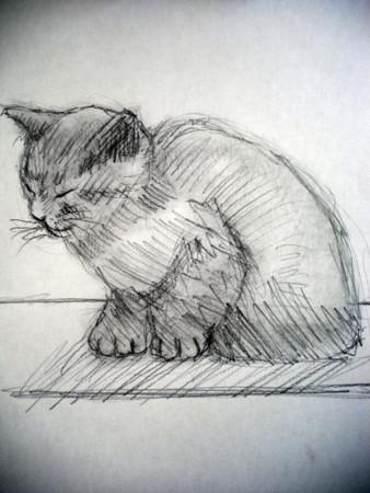 f:id:sanshu_seiso:20110809134331j:image