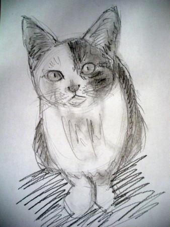 f:id:sanshu_seiso:20111024141409j:image