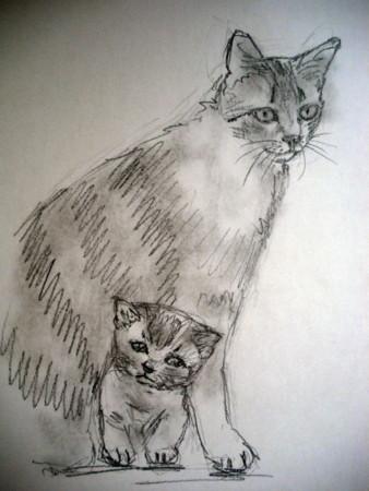 f:id:sanshu_seiso:20111122163211j:image