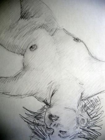 f:id:sanshu_seiso:20111125143202j:image