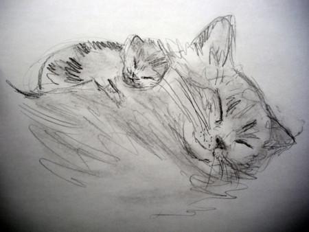 f:id:sanshu_seiso:20111129133833j:image