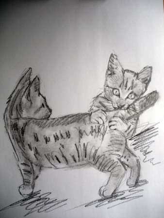 f:id:sanshu_seiso:20111207140343j:image