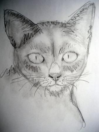 f:id:sanshu_seiso:20120209142329j:image