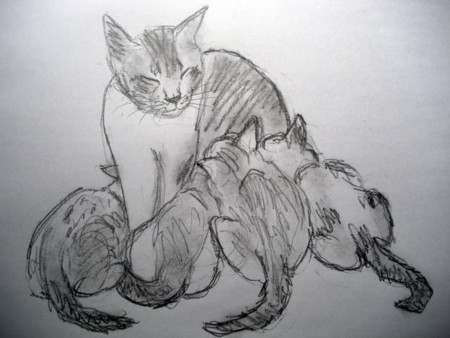 f:id:sanshu_seiso:20120305144537j:image