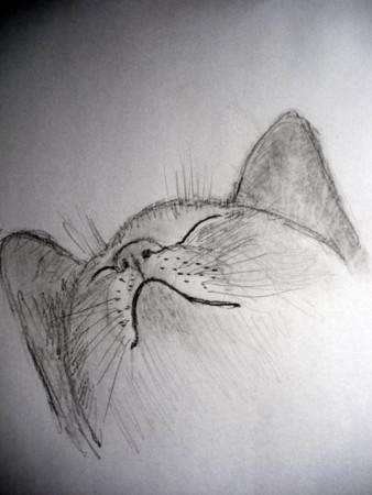 f:id:sanshu_seiso:20120307140412j:image