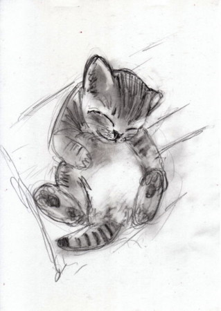f:id:sanshu_seiso:20120317202039j:image