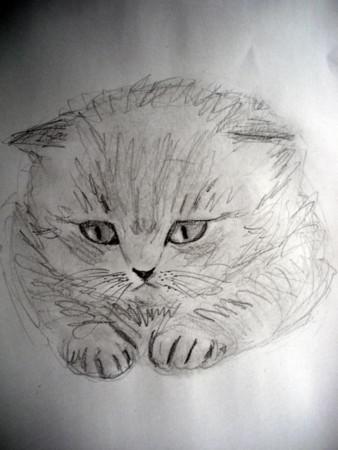 f:id:sanshu_seiso:20120323140407j:image
