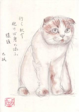 f:id:sanshu_seiso:20141117205312j:image