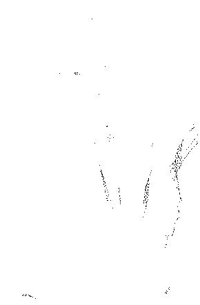 f:id:sansyokuu:20170620043138p:plain