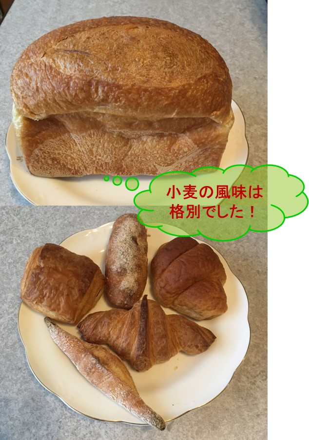 f:id:santa-baking:20190401222119j:plain