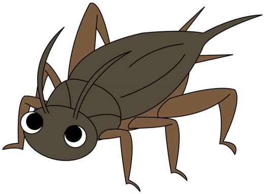 パスコ コオロギ