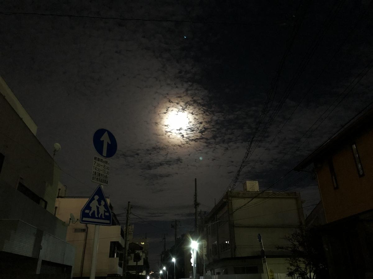 f:id:santa_nyan:20191117222042j:plain