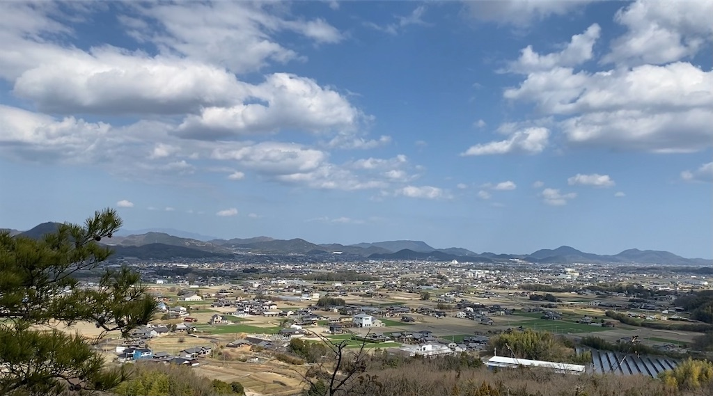 f:id:sanuki_styles:20210301004159j:image