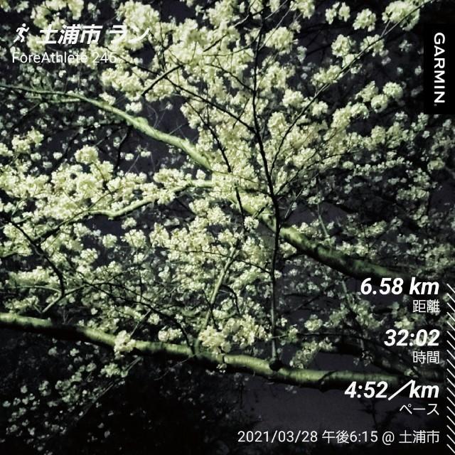 f:id:sanumafudou:20210328214603j:image