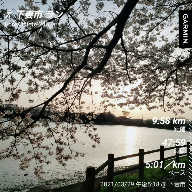f:id:sanumafudou:20210331190227j:image
