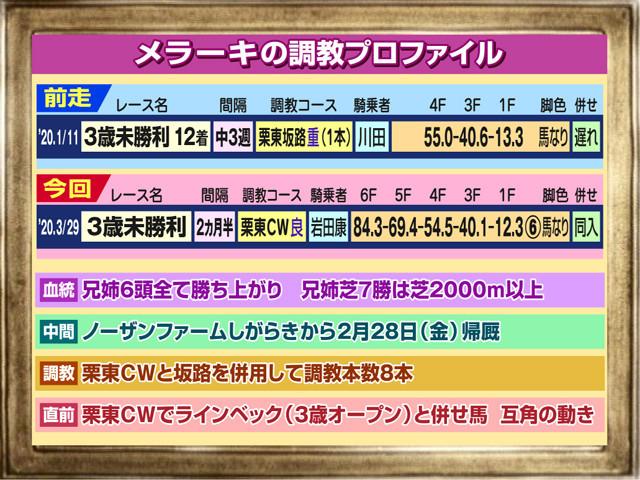 f:id:sanzo2004321:20200330145609j:plain