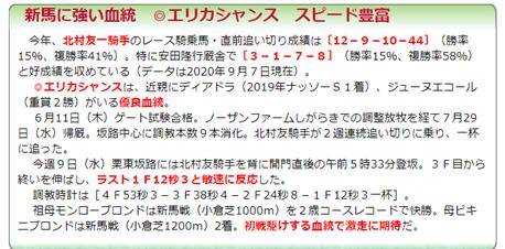 f:id:sanzo2004321:20200912145558p:plain