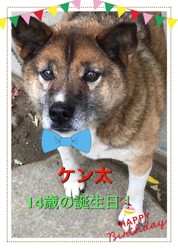 f:id:saokazusaokazu07:20171112213420j:image