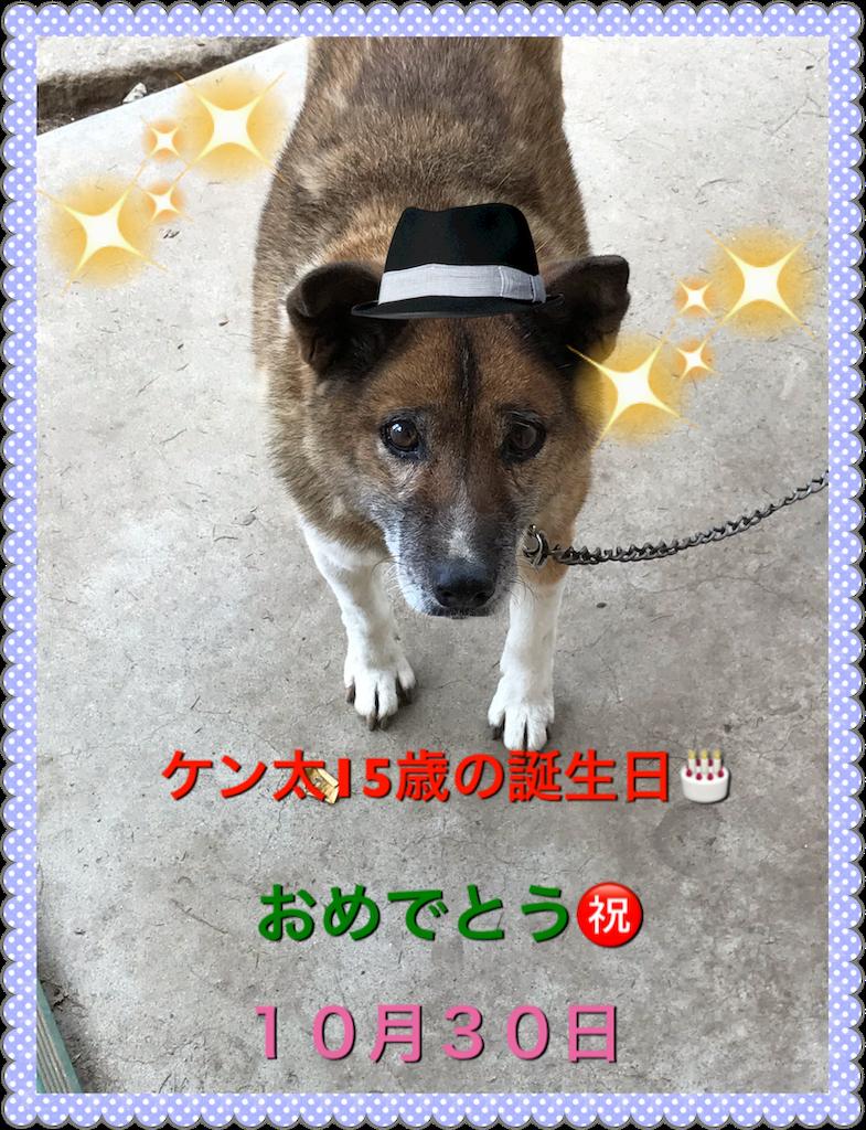 f:id:saokazusaokazu07:20181106165457p:image
