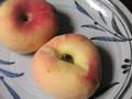 おまんじゅうみたいな桃