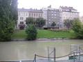 雨で濁ったドナウ川