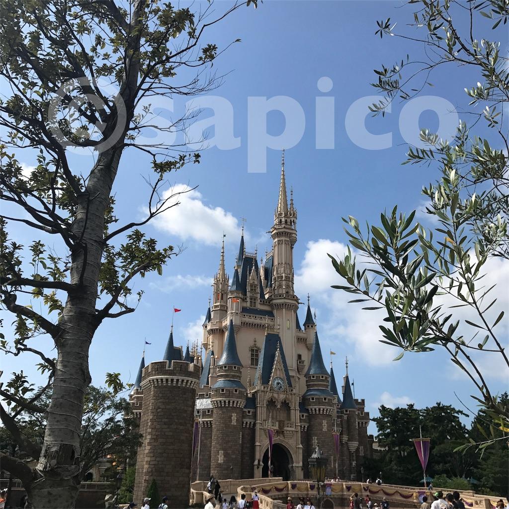f:id:sapic:20180729151811j:image